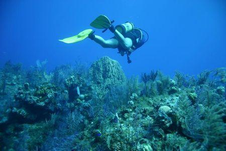 Những vùng lặn biển đẹp nhất thế giới Bimini2_128363232_std