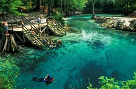 Những vùng lặn biển đẹp nhất thế giới Florida