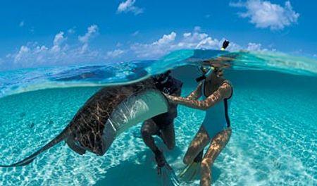 Những vùng lặn biển đẹp nhất thế giới Turks