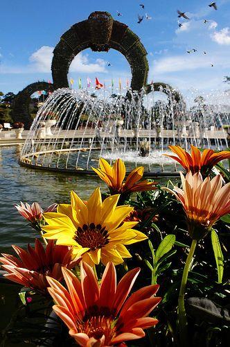 Công viên hoa rực rỡ ở Đà Lạt