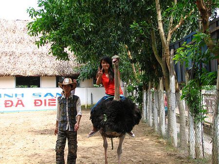 du lịch Vĩnh Long - KDL Vinh Sang - Chợ nổi Cái Bè