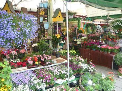 Một cửa hàng bán hoa tươi trong Viktualienmarkt