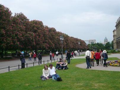 Một góc công viên Hofgarten