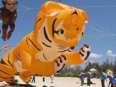 Diều hình Hổ