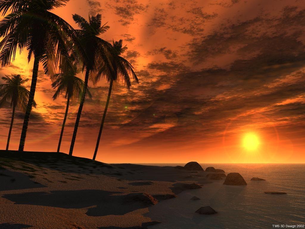 Phong cảnh-hoàng hôn Bien-jamaica-khi-hoang-hon0