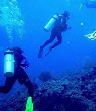 Lặn biển ở tỉnh Bocas del Toro