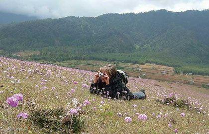 Núi hoa ở Bhutan: Đây là một trong những điểm đến độc đáo nhất trên thế giới. Bhutan có hơn 5.400 loài thực vật, trong đó có tới 600 loài phong lan và 46 loài đỗ quyên.