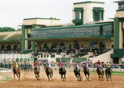 Đợt đua của ngựa thuần chủng: tốc độ, đẹp mắt, thu hút đông đảo người xem.