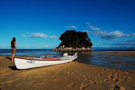 Đi thuyền Kayak tại vịnh Mosquito