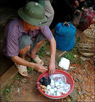 Ông Hảng Văn Phù, người dân tộc Mông hơn 70 tuổi, một trong những người kinh doanh có tiếng chim hoạ my ở phố huyện Mường Khương đang lựa mua chim ở chợ ngày 13/7/2009