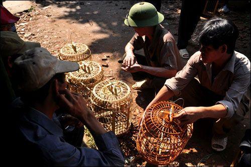 Những chiếc lồng chim sành điệu của Việt Nam