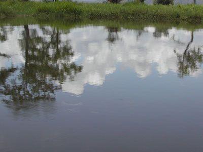Mặt nước hồ Lak