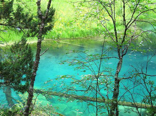 Khe Cửu Trại nổi tiếng với những hồ nước xanh biếc, thác nước, bãi cát,những cảnh rừng nguyên sinh, đỉnh núi tuyết và bãi đá hoa cương.