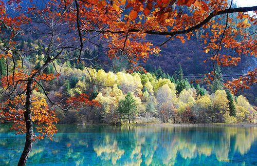 khi những hàng cây đã bắt đầu chuyển màu trên cành và mặt hồ trong soi bóng mảng trời xanh ngắt trên cao