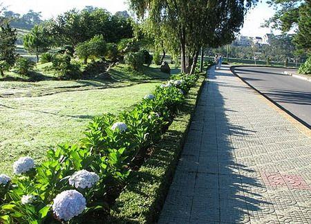 Vườn Hoa Bích Câu