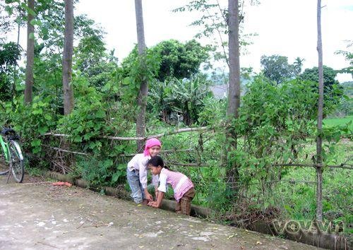 Những đứa trẻ này vẫn giữ thói quen nghịch ngợm trên con kênh nội đồng (nay đã được đổ bê tông)
