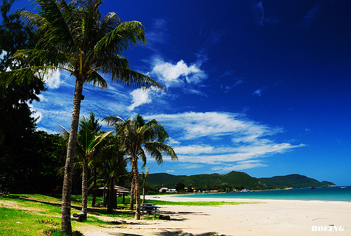 Du Lịch Côn Đảo: Du Lịch Côn Đảo Tết Nhâm Thìn 2012