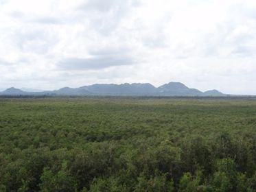 Núi Cấm nhìn từ tháp ngắm cảnh