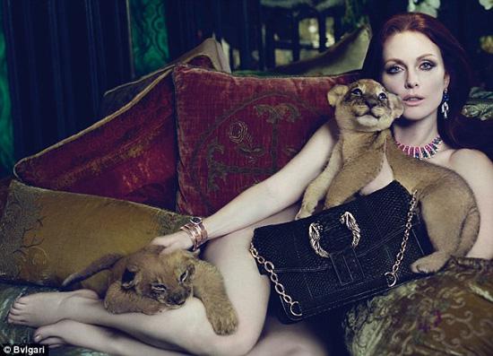 Julianne Moore chụp ảnh nuy cùng động vật