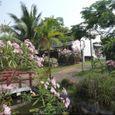 Tổng quan - Le Belhamy Hội An Resort & Spa