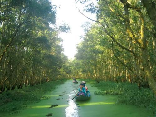 Le parc national de Tram Chim
