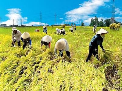 10 Thắng cảnh đẹp nhất Việt Nam trong mắt du khách quốc tế. 5