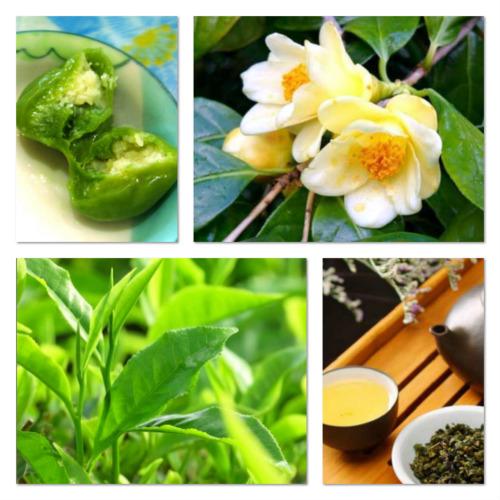 Bao Loc tea