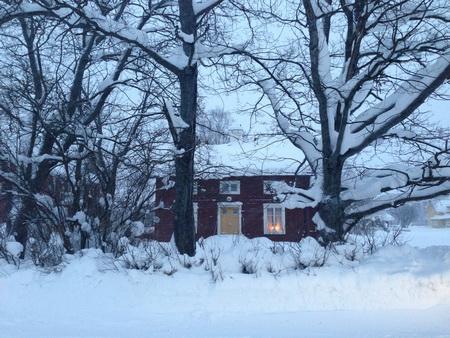 annanguyen317] Cảnh mùa đông