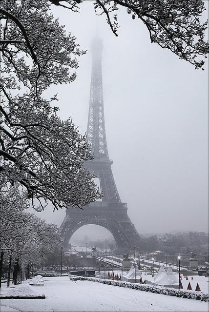 Paris xinh đẹp qua những góc nhìn 1