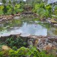 Vườn - Khách sạn Hoà Bình Phú Quốc