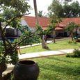 Tổng quan - Terrace Resort