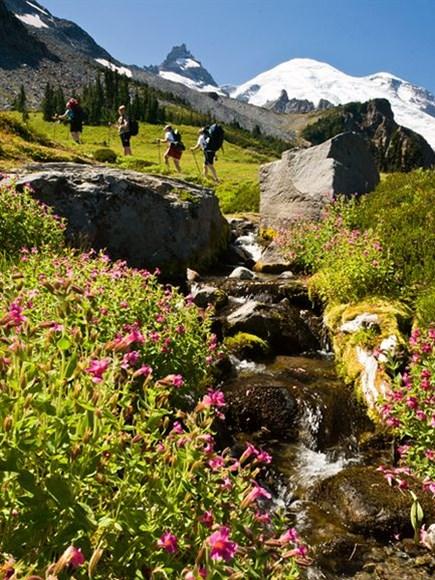 Những điểm trekking lý tưởng nhất nước Mỹ 3