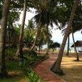 Bãi biển - Tropicana Resort Phú Quốc