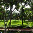 Vườn - Tropicana Resort Phú Quốc