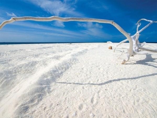 Đâu phải chỉ có những bãi biển cát vàng 1