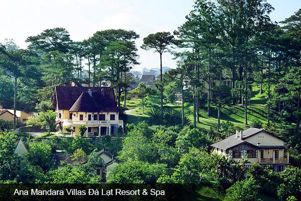 Top khách sạn trung tâm Đà Lạt