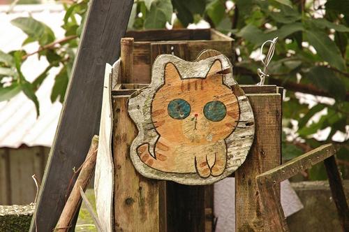 Thị trấn mèo dễ thương ở Đài Loan 5