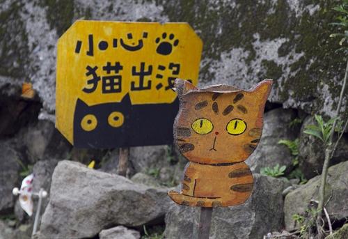 Thị trấn mèo dễ thương ở Đài Loan 18