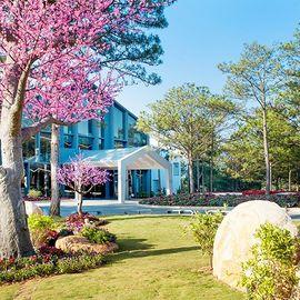 Terracotta Hotel & Resort Dalat - 3N2Đ - Trọn gói vé máy bay