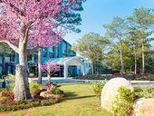 Terracotta Đà Lạt Hotel & Resort