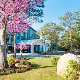 Terracotta Hotel & Resort Dalat - Đà Lạt