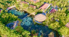 Alba Wellness Resort Huế By Fusion